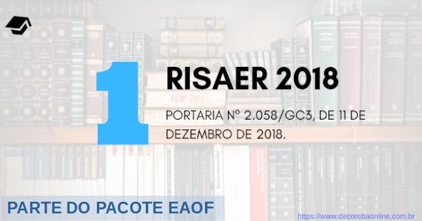 01_RISAER